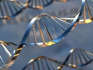 Хронический стресс ведёт к мутациям в ДНК